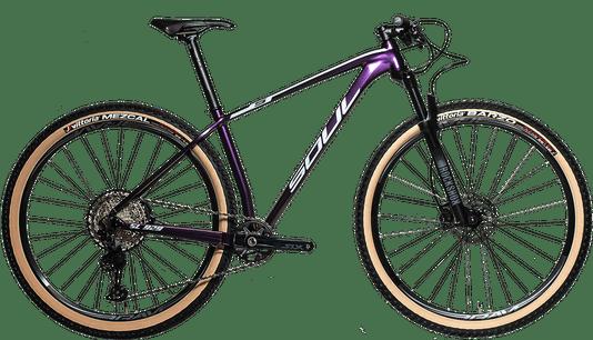 Bicicleta Sl929 Boost Press Fit Gx Eagle 12V Camaleao